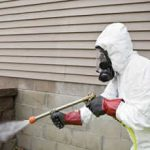 Pest control and termite inspection experienced specialists contacts and reviews