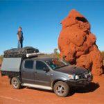 Termite nests as biomimetic architecture
