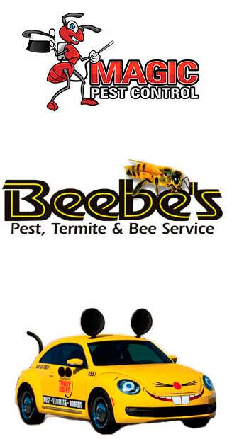 Termite Inspection In Arizona Magic Pest Control
